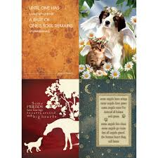 loss of pet sympathy card 12 pack health personal care