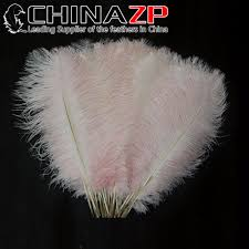 Where To Buy Ostrich Feathers For Centerpieces by Online Get Cheap Ostrich Goods Aliexpress Com Alibaba Group