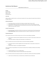 Government Sample Resume by Legal Clerk Sample Resume 20 Clerk Resume Sample Terminal
