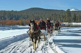 saddle up sunriver style contact sunriver stables for dates and pricing picture