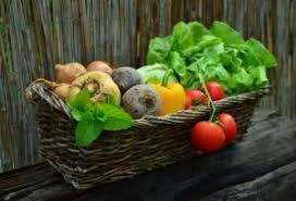 how to plan out a vegetable garden garden lovin