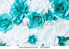 turquoise flowers turquoise flower stock images royalty free images vectors