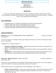 summary of skills resume example formal resume sample bartender featuring summary of qualifications fullsize by teddy sher formal resume sample bartender featuring summary of qualifications