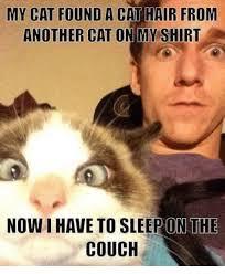 Funny Sleep Memes - sleep meme 100 images i love to watch you sleep weknowmemes