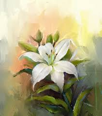White Lily Flower Oil Painting White Lily Flower Stock Illustration Image 45322836