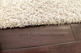 Funny Area Rugs 100 Rugs Amazon 51 Best Rugs Images On Pinterest Carpets