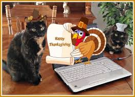 happy thanksgiving 2015 the conscious cat