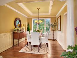 Painting Wainscoting Ideas Dining Room Wainscoting Ideas With Traditional Area Rug Dining