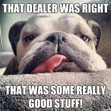 High Dog Meme - high dog meme famous dog 2018