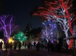 phoenix zoo lights members only phoenix holiday lights season kicks off