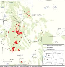 Definition Of Wildfire Intensity by The Controversial Management Of Fire In The National Forests Of