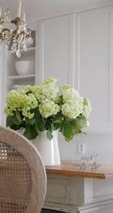 best 25 hydrangea arrangements ideas on pinterest hydrangea