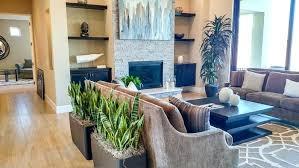 Next Home Interiors Interior Design Indoor Plants