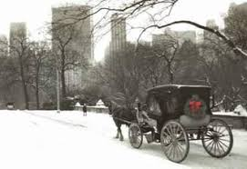 new york carriage company central park carriage rides
