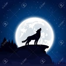 background with wolf and moon illustration royalty