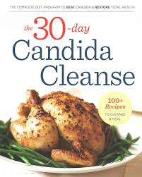 best 25 candida cleanse ideas on pinterest candida diet recipes