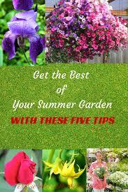 Summer Gardening - vegetable gardening archives new house new home