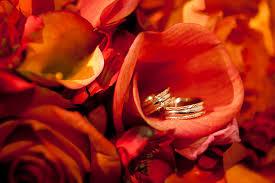 Wedding Photographer Colorado Springs Pauline Chapel Wedding Photography In Colorado Springs Wedding