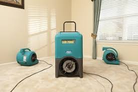 carpet cleaners pearland texas carpet vidalondon