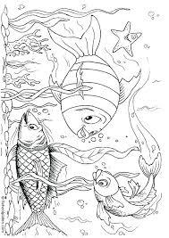 underwater dinosaurs coloring pages underwater coloring pages underwater coloring page underwater ocean