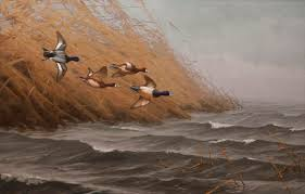 bluebill scaup waterfowl duck hunting oil painting by nature artist jim ratazak
