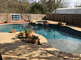 austin backyard chickens housesitsearch the world u0027s most powerful house sit search engine