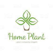 home plant vector template stock vector art 668285014 istock