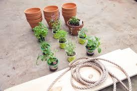 Herb Shelf Herb Garden Planter Shelf Design Sippy Cups And Rose