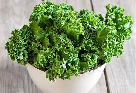 comment cuisiner le kale comment cuisiner le chou kale notre allié santé labelforme