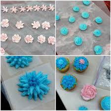 my thoughts on the wilton cake decorating class what megan u0027s making