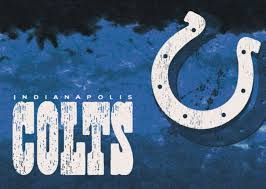 Nfl Area Rugs Indianapolis Colts Area Rug Nfl Colts Area Rugs