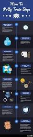 Mickey Mouse Potty Seat Instructions by Best 25 Potty Training Boys Ideas On Pinterest Tips For Potty