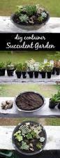 387 best gardening images on pinterest gardening tips plants