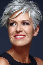 coloring hair gray trend name short hair with silver and purple highlights google search