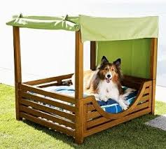 Floating Dog Bed 121 Best Cute Animal Ideas Images On Pinterest