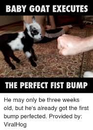 Baby Bump Meme - 25 best memes about bump bump memes