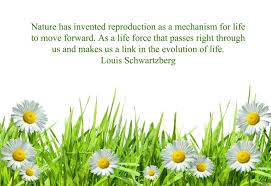 famous flower garden quotes gallery garden and landscape ideas