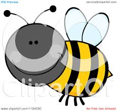 queen bumble bee drawing