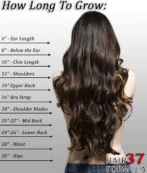 long hair style showing ears best 25 hair length chart ideas on pinterest length of hair