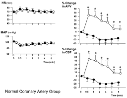 Blood Pressure Map Additive Effects Of Nicorandil On Coronary Blood Flow During
