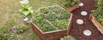 How To Build An Herb Garden How To Build A Hexagon Planter