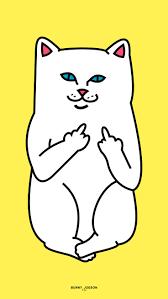 halloween cat background deviantart 24 best ripndip images on pinterest white cats iphone