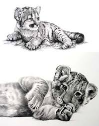 baby tiger tattoo design tiger tattoo design tiger tattoo and