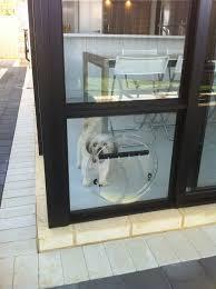 doggy door glass large dog door sliding glass btca info examples doors designs