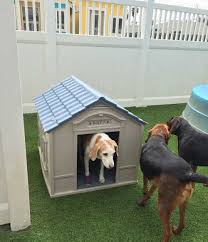 vacation plans ruff house pet resort