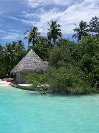 Tiki Hut On Water Vacation 154 Best Thatched Huts Images On Pinterest Beach Places And