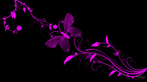 Vs Pink Wallpaper by Pink Butterfly And Wallpapers For Gt Black Pink Butterfly
