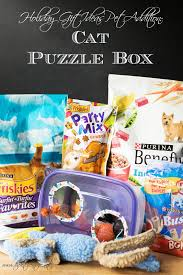 holiday gift ideas for your pet cat toy puzzle box the kitchen
