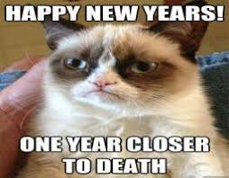 Grumpy Cat Meme Happy - happy new year grumpy cat know your meme