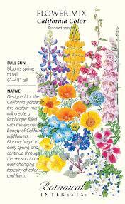 california native plants list amazon com california color wildflower seeds 14 grams